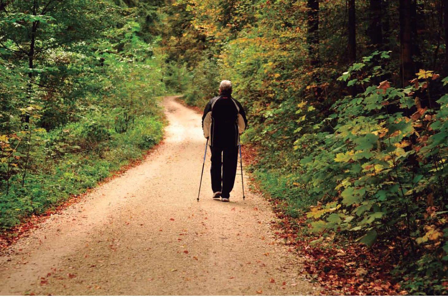 Sólo caminar ya nos sirve para activar mente y cuerpo... ¿Probamos hoy mismo?